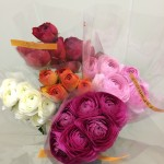 ranunculus-select-assortment-2