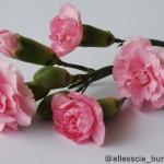Spray Pink