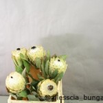 Protea Barbigera Snow Queen